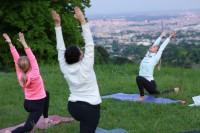 Open Air Yoga Vienna, Grinzing